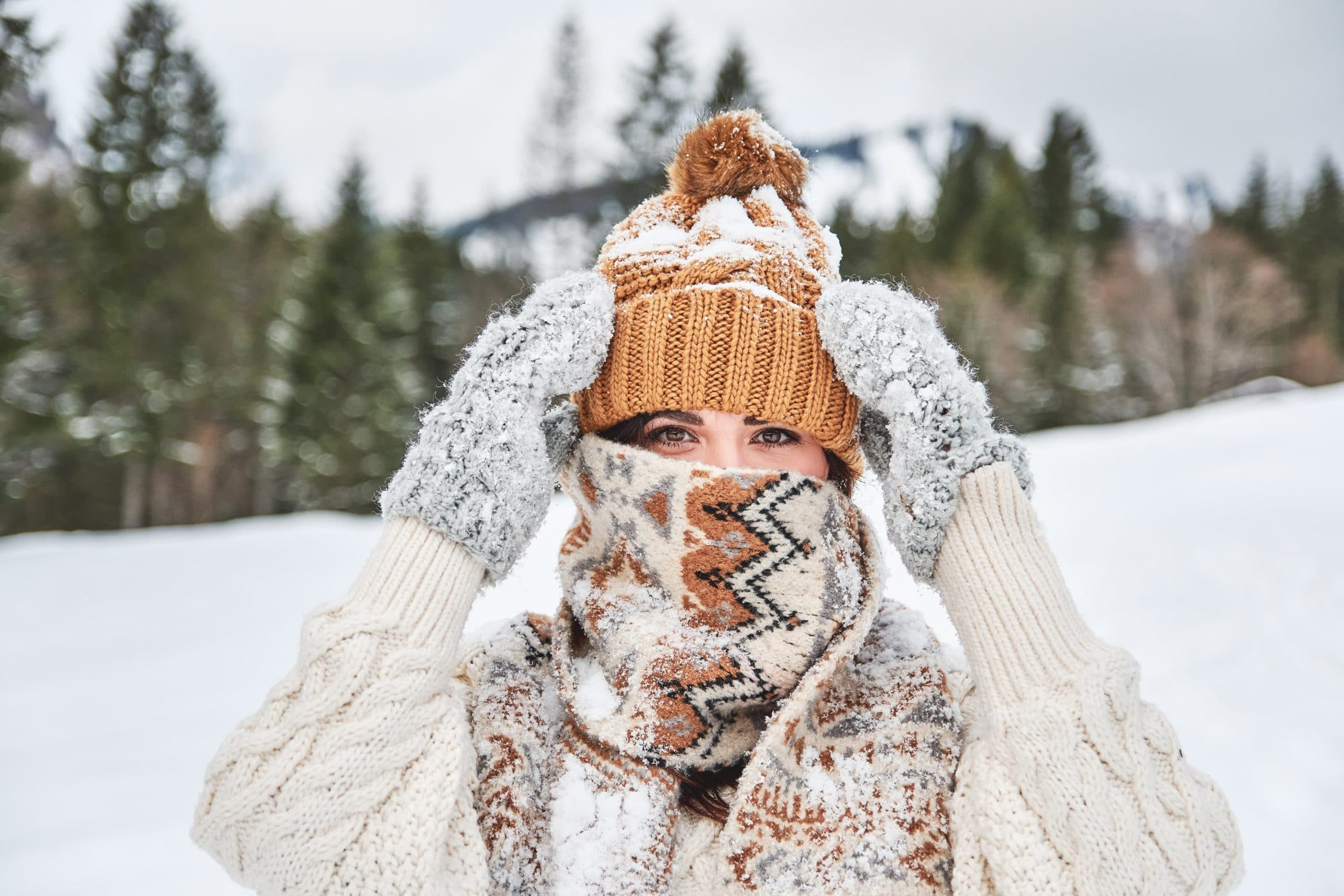 Moving Tips for Winter