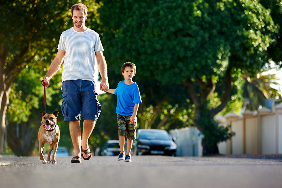 Dad and son take dog for a walk in their neighborhood on a quiet residential street
