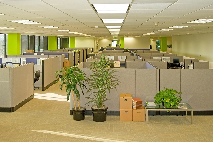 Corporate office with cubicles after a reorganization move