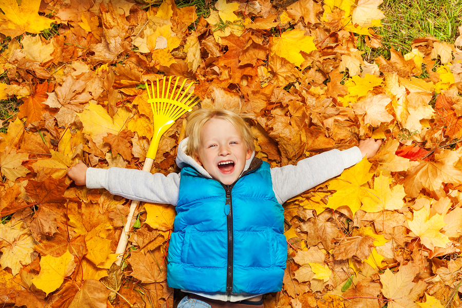 Laughing boy laying on the autumn leaves with rake near, view from top during daytime in autumn